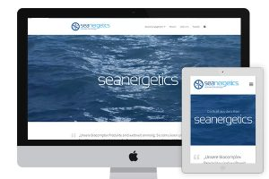 Seanergetics website
