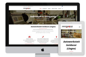 Website of Inviducar